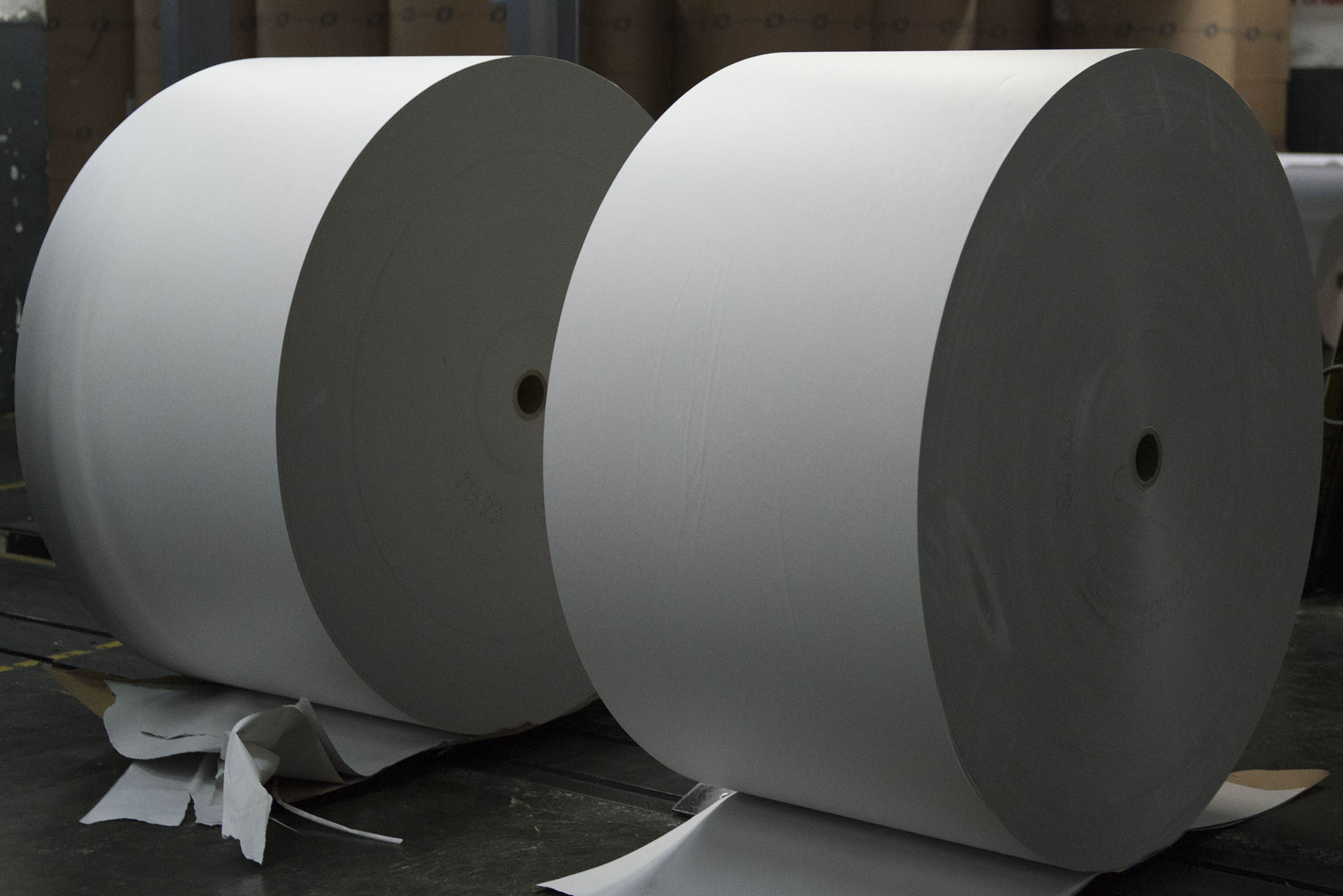 Paper Made From Stone Tempts Japans Biggest Printer to Invest